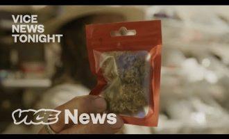 Why the 'NJWeedMan' Voted Against Legal Marijuana 5