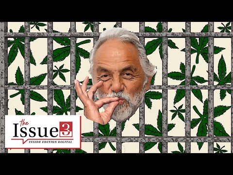 The History of Marijuana in the US According to Tommy Chong 1