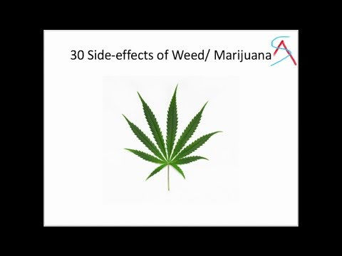 30 Side effects of Weed/Marijuana/Joint/charas/bhaang/hasish/cannabis on the body 1