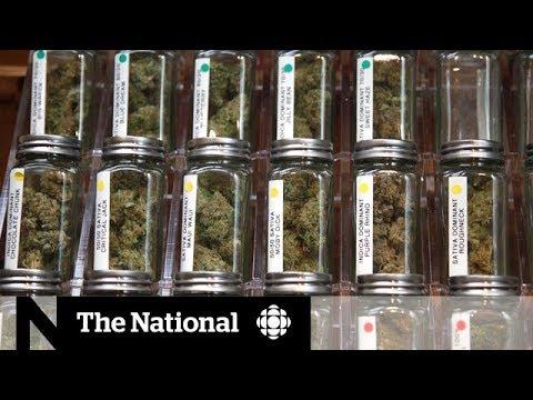 Weed strains: Marijuana marketing - spin or science? 1