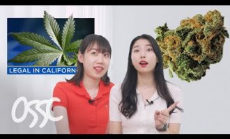 Koreans React To The First Day of Marijuana Legalization   𝙊𝙎𝙎𝘾 4