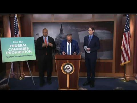 Schumer drafts bill to federally legalize marijuana 1