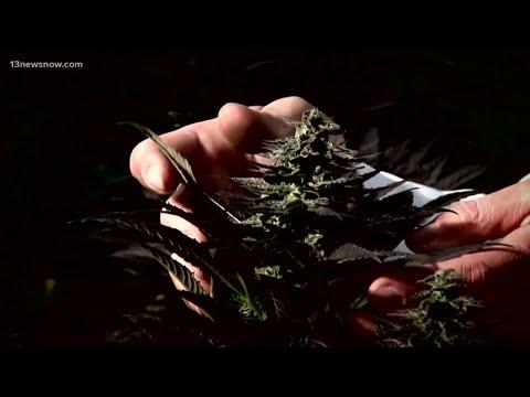 Virginia's new marijuana laws go into effect at midnight 1