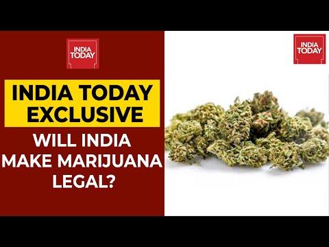 SSR Case: Will India Make Marijuana Legal?   NewsMo 1