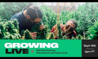 Growing Live with Kyle Kushman, Nate Hammer and Parker Curtis | September 15th 2