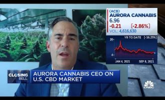 You'll see medical marijuana first at the federal level in the U.S.: Aurora Cannabis CEO 3