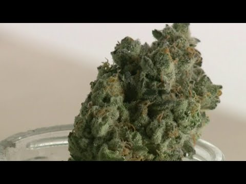 Proposed marijuana dispensary sparks debate in River Rouge 1