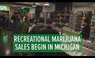 Recreational Marijuana Sales in Michigan 3