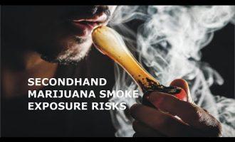 Secondhand Marijuana Smoke Exposure Risks 2
