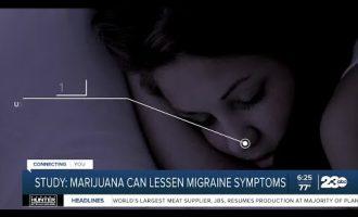 Study: Marijuana can lessen migraine symptoms 7
